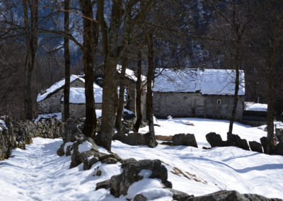 Alpe Muntè lungo la via per il rifugio Rivetti